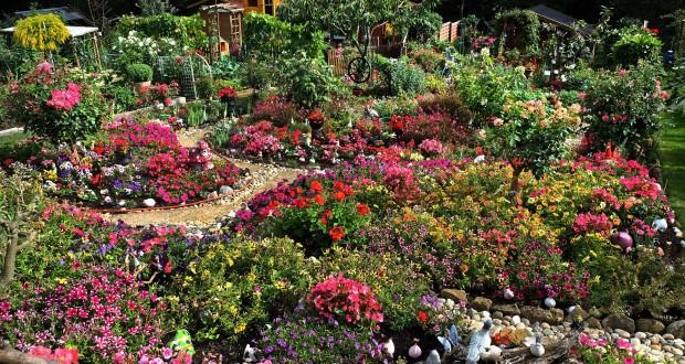 Luxembourg Tout Pour Jardiner A Luxexpo Le Quotidien